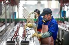 汇丰银行:越南日益成为颇具吸引力的商业目的地