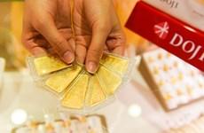 7月23日下午越南国内黄金价格超过5400万越盾