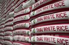 2020年泰国的大米出口量预测降至20年来最低