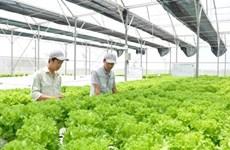 越南农业利用第四次工业革命成就实现发展