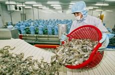 2020年上半年越南虾类出口额同比增长5.7%