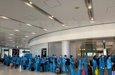 越南政府组织航班 将190名越南公民从日本接回国