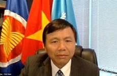 越南呼吁呼吁加强保护阿富汗女性权益