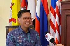 越南驻印尼大使:越南是东盟积极、主动、负责任的一员