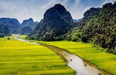 宁平省促进农业与旅游业融合发展模式