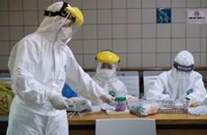 8月7日越南新增3例新冠肺炎确诊病例 均与岘港市有关