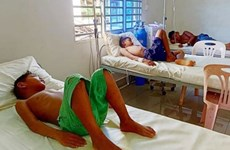 """""""基孔肯雅热""""病已蔓延至柬埔寨15个省份"""