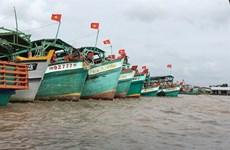 金瓯省集中精力推动海阳经济发展  把潜力和优势充分发挥出来