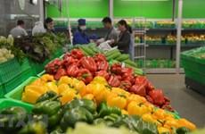 今年前7月越南蔬菜水果出口额达近20亿美元