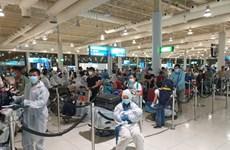 新冠肺炎疫情:在阿联酋的260名越南公民安全回国