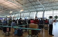 新冠肺炎疫情:在韩国的313名越南公民安全回国