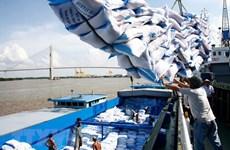 越南向非洲市场的大米出口继续呈大幅增长趋势