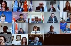 越南与联合国安理会:联合国安理会讨论几内亚比绍政治僵局