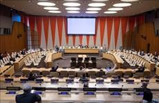 越南呼吁国际社会加强为黎巴嫩提供人道主义援助
