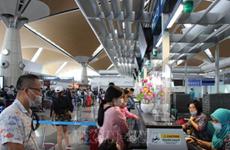 越南将在马来西亚的近240名公民接回国