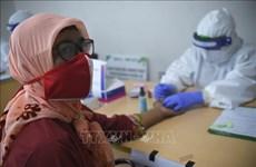 印尼投入3.39亿美元用于生产新冠肺炎疫苗