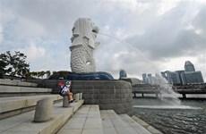 新加坡新冠肺炎疫情复杂多变  菲律宾新增病例超3400例  印尼禁止外国游客入境