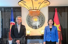 越南与南方中心促进合作