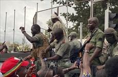 马里兵变:越南呼吁促进马里和平对话 尽快恢复正常秩序