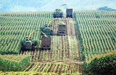 官方发展援助资金占对越南农业投资总额约50%