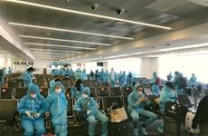 新冠肺炎疫情:340多名越南公民从澳大利亚安全回国