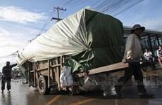 2020年上半年泰国跨境贸易下降9.18%