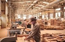 在新冠肺炎疫情背景下木材和木制品出口仍呈现增长趋势