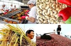 俄罗斯:越南农产品的潜在市场