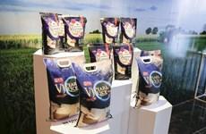 越南Vinaseed品牌大米征服国际市场