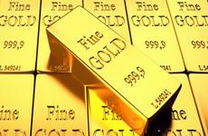 8月24日上午越南国内黄金价格下降40万越盾一两