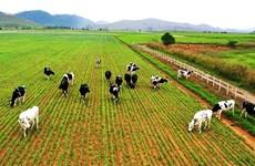越南企业迎来境外投资新趋势