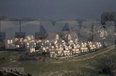 越南呼吁以色列停止扩建定居点计划