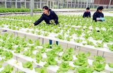 永福省全力推进加工业发展
