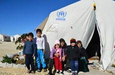联合国安理会就叙利亚和朝鲜局势召开例行会议 越南呼吁国际社会为叙利亚提供人道主义援助