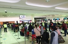 越南将在澳大利亚、新西兰和汤加的340余名公民接回国