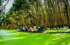 安江省集中将旅游业发展成为尖端经济产业