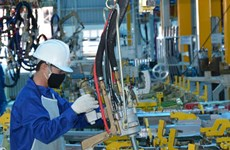 平阳省年初至今新成立企业接近4000家