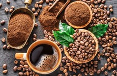 EVFTA助推越南咖啡出口