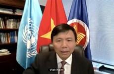 越南呼吁利比亚有关各方早日恢复谈判
