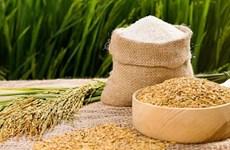 加大大米出口力度的佳机