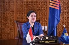 AIPA 41:印度尼西亚呼吁维持东盟的和平、友好与和谐