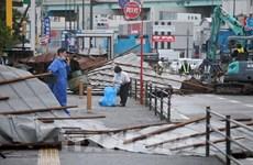越南驻日本福冈总领事馆同日本有关部门配合寻找在台风中失踪的2名越南研修生