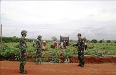 广南省边防力量全力筑牢防疫堡垒