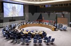 越南与联合国安理会:越南对法语国家国际组织所作出的贡献表示欢迎