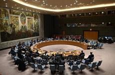 越南与联合国安理会:越南呼吁保护发生武装冲突各国的人民