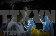 越南连续10天无新增本地新冠肺炎确诊病例