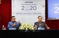 越南今年最大的棉花日活动将以视频方式举行
