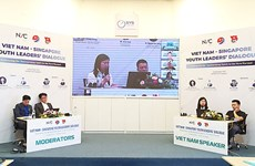 加强越南与新加坡年轻企业的合作