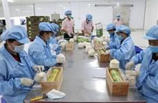 越南农产品价值得到肯定