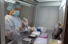越南卫生部批准新冠病毒检测计划